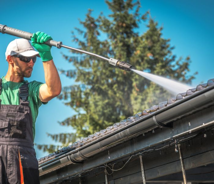 roof cleaning expert in fort myers